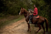 Horseman, Perry County, AL (2017)
